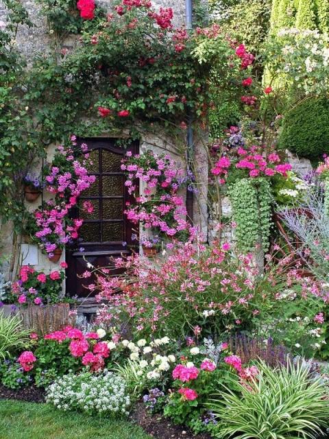 Beautiful pink garden