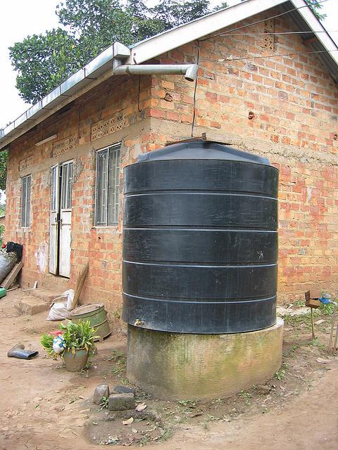Rainwater Harvesting - Photo by sarahemcc