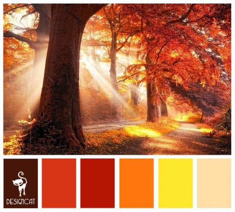 Rich autumnal colour scheme