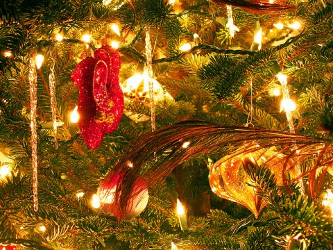 Decorating Your Home This Christmas: Everything You Need To Know