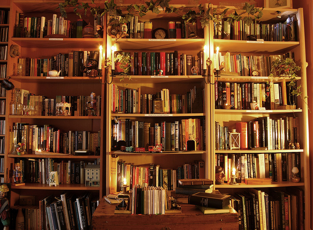 Create A Cosy Home Library