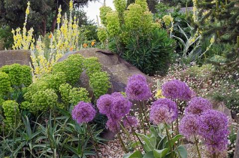 Garden - by ukgardenphotos