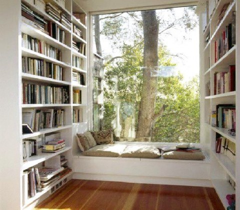 Window-seat library