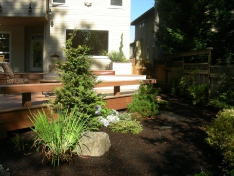 Tidy Garden With Decking