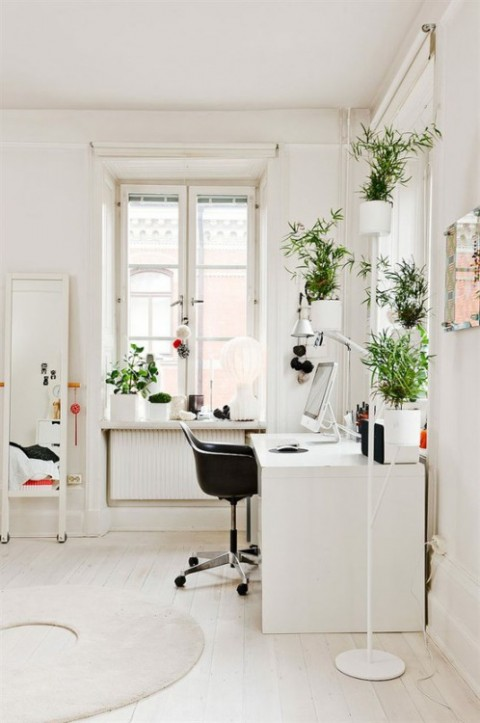 Minimalist Office With Plants