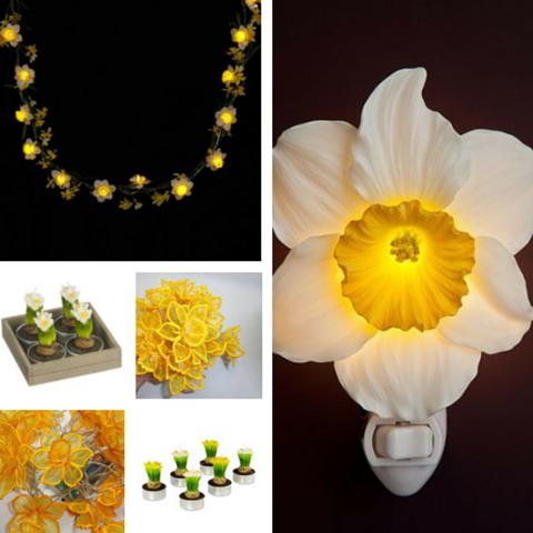 Daffodil Lighting