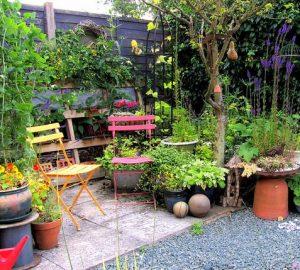 5 Ways To Get Your Garden In Shape This Summer