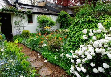 4 Tips For Creating A Garden That You Love