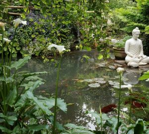 How to create a Buddha-themed garden
