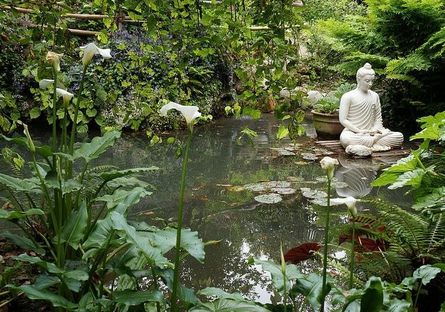 How To Create A Buddha Themed Garden
