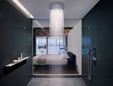 Grohe & Hansgrohe, the German Shower Revolution?