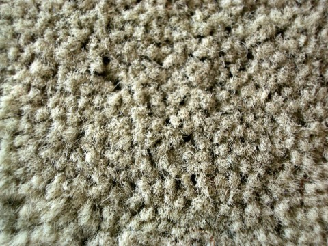 The Difference Between The Cheapest And The Most Expensive Carpets