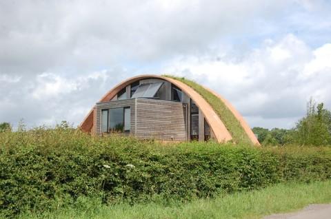 Easy Interior Design Tips For A Greener Home
