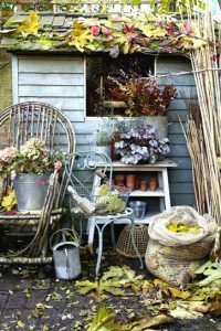 Prepare Your Garden For Winter – Take Advantage Of Autumn - Garden Shed In Autumn