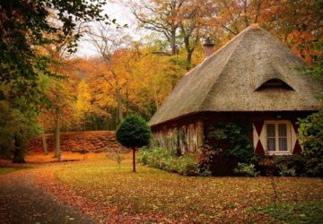 Prepare Your Garden For Winter – Take Advantage Of Autumn