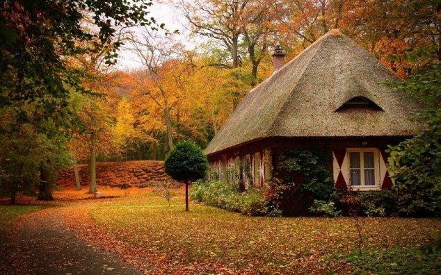 Prepare Your Garden For Winter – Take Advantage Of Autumn