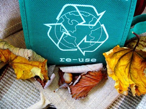 It's Not Easy Being Green: Solutions For The Eco-Friendly Novice - Re - Use & Recycle
