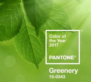 Greenery Chosen as Pantone Colour of the Year 2017