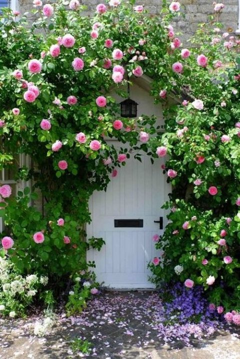 Front door and entry garden style tips – how to make a stunning entrance