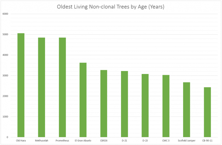 10 Oldest Living Non-clonal Trees by Age