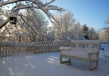Winter To Summer - How Does Your Garden Transform During These Months