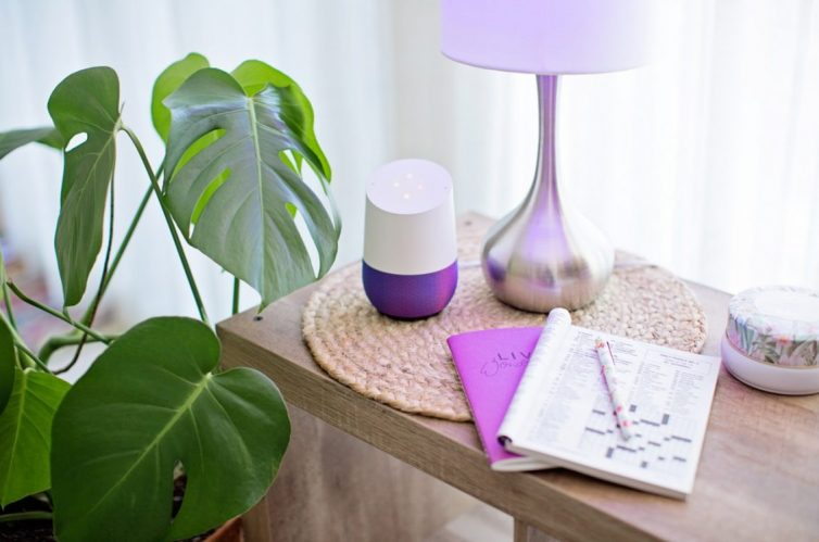 Using Plants To Transform Your home - Monstera