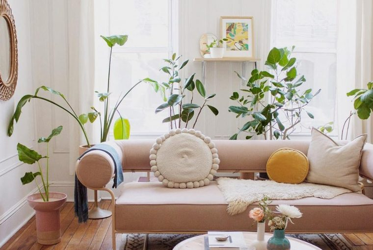 Using Plants To Transform Your home - Image From honestlywtf.com