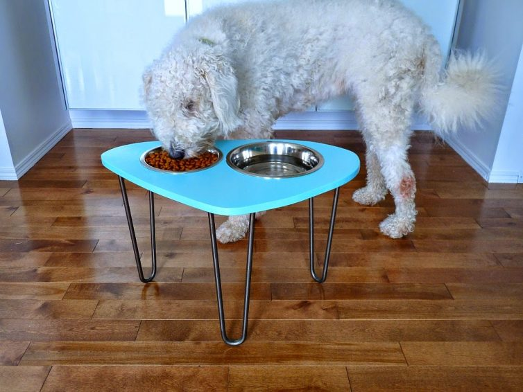 Pampered Pooch - 5 Items All Dog Owners Need - Raised Dog Bowl Stand - From Dans Le Lakehouse