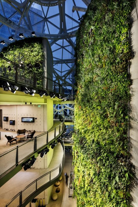 Biophilic Design And Wellbeing - Amazon's 'Spheres' in Seattle, USA