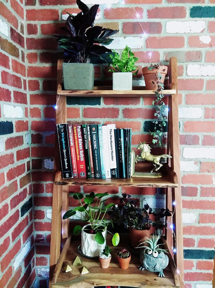 Wood Plant Wall Shelves