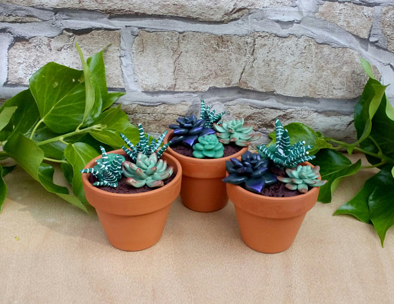 The Etsy Revolution - Succulent Plants- From Etsy - Via IndigoCreate