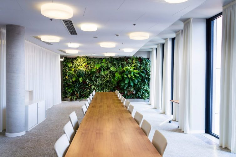 Planting For Productivity - Plant Wall In Office