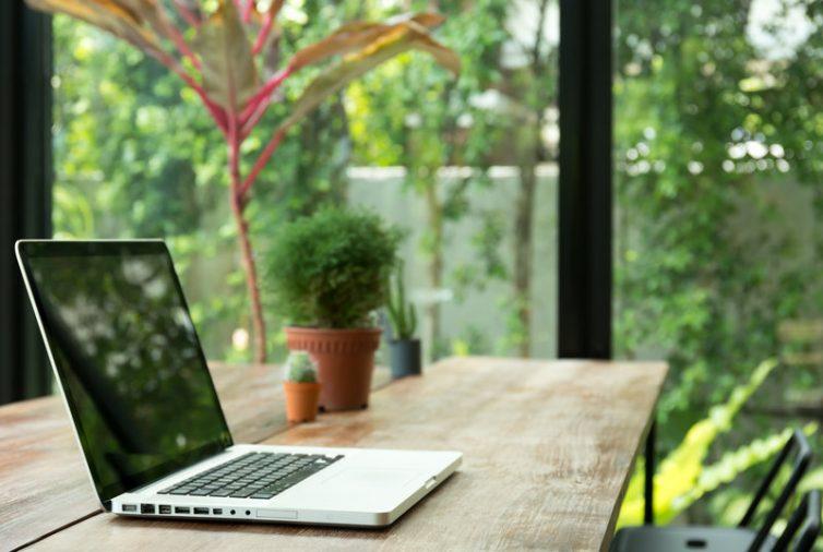Plants Desk Office