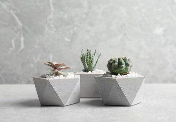Concrete Plant Pots, Succulents