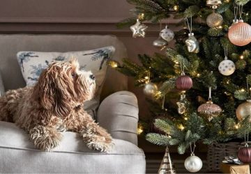 M&S Christmas tree and decorations with dog