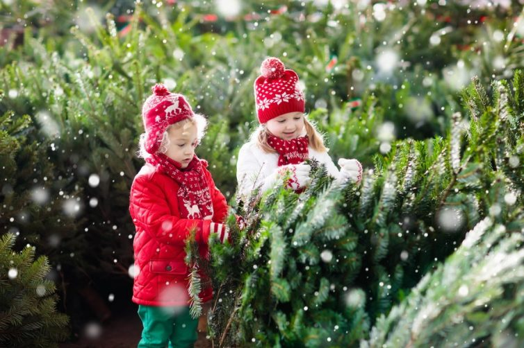 Children Choosing Christmas Tree