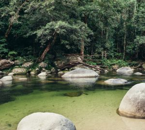 Mossman Gorge, Port Douglas, Cairns Queensland Australia