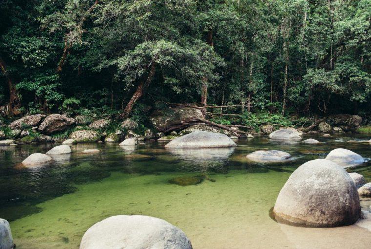 Mossman Gorge, Port Douglas, Cairns Queensland Australia