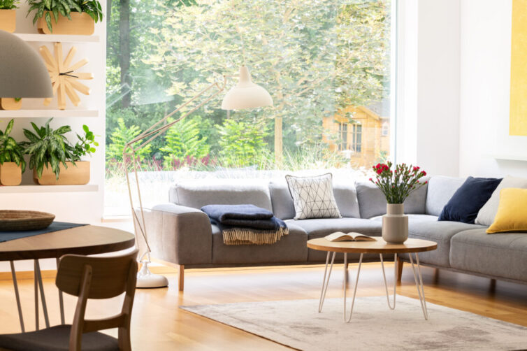 View of the backyard through a large window in a natural living room interior with plants, wooden furniture and a comfy sofa