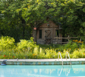 Garden with wooden shed, plus swimming pool.