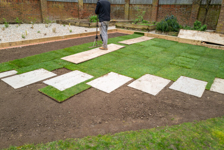 Garden renovation. Placcing new grass lawn