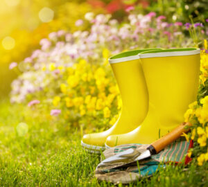 Yellow wellington boots in garden with garden tools
