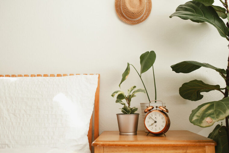 Bed and small cupboard. Alarm clock, plants