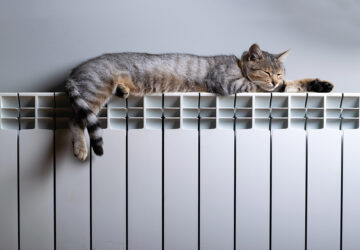 Tabby cat laying on radiator