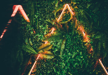 Neon Lights amongst plants