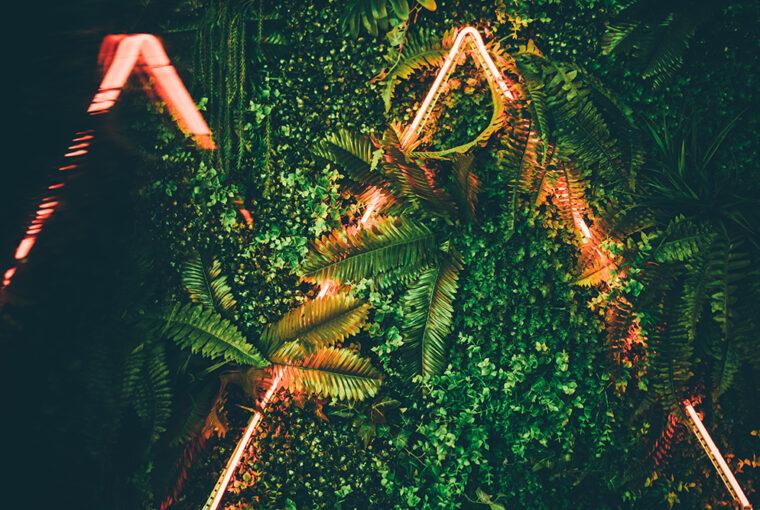 Neon Lights amongst plants