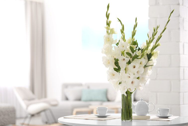 Vase with white gladiolus flowers placed on table in lounge