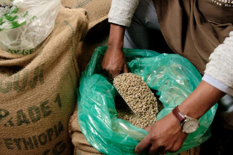 Ethiopian dried coffee beans in sacks