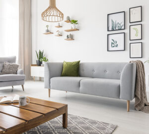 Neutral Loung with grey sofa and plants