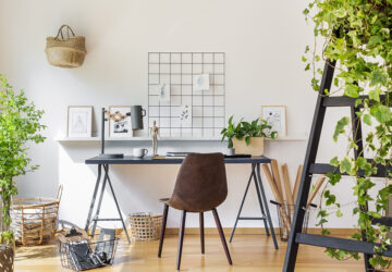 Office desk and chair plants